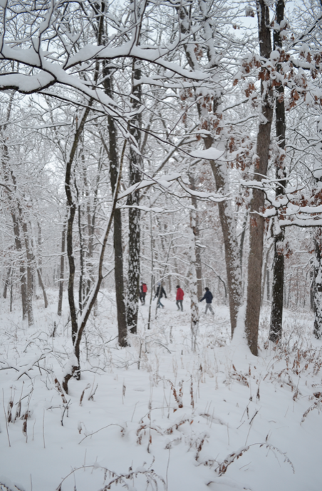 We got lucky for Venture Crew's campout this past weekend—7 inches of snow!